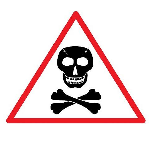 Bild zum Weblog Lebensgefährlich