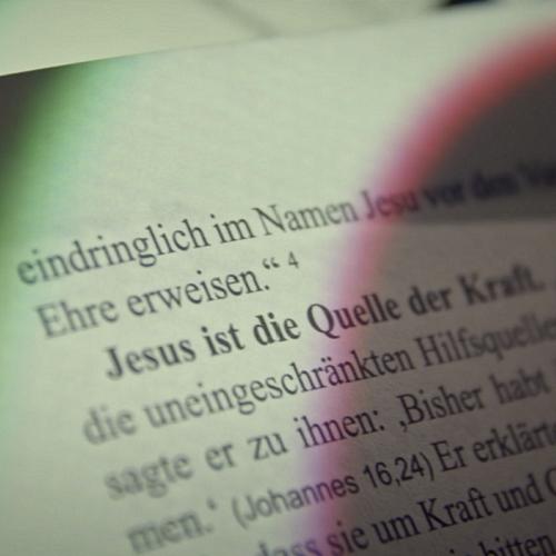 Bild zum Weblog Offene Worte - Martin Lungenschmid