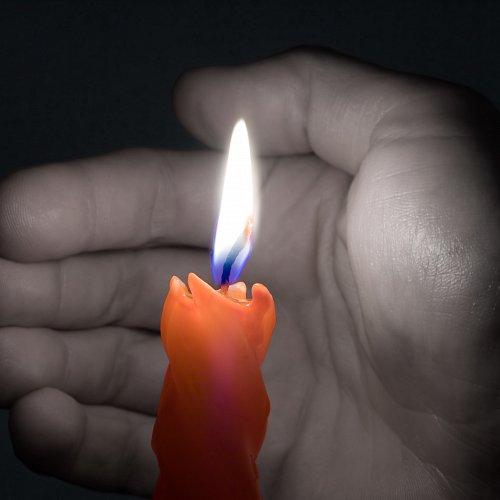 Bild zum Weblog Fest des Friedens