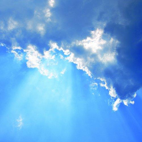 Bild zum Weblog Leben im Licht