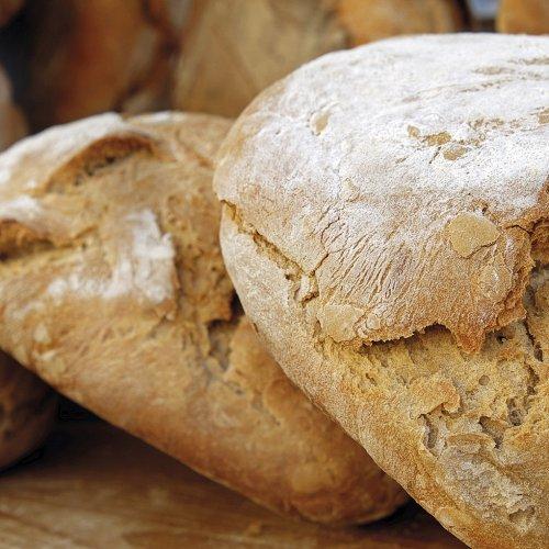 Bild zum Weblog Das Brot