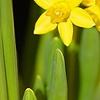 Bild zum Weblog Ostermittagessen für sozial benachteiligte Menschen