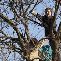Bild zum Weblog Bezirks-Teenietreffen in Langenlois