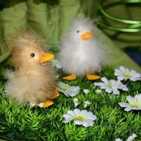 Bild zum Weblog Frühlingsfest