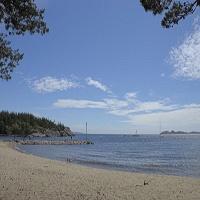 Bild zum Weblog Wir wünschen einen schönen Sommer!