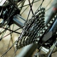 Bild zum Weblog 2. Mödlinger Rad-OL