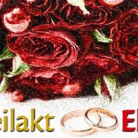 Bild zum Weblog Drahtseilakt Ehe