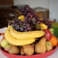 Bild zum Weblog Besuch im Kapuzinerkloster