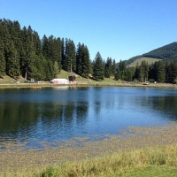 Bild zum Weblog Gemeindewandertag Teichalm
