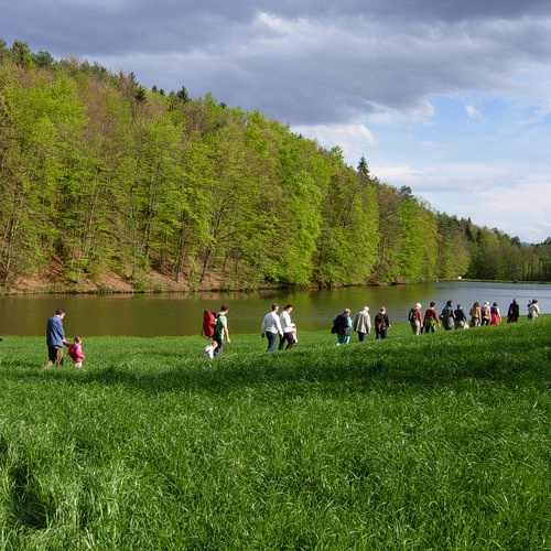 Bild zum Weblog LLG Kräuterwanderung