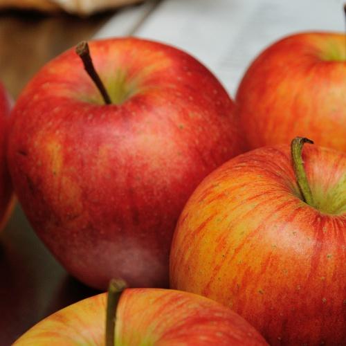 """Bild zum Weblog Gesundheitsclub """" Glutenfrei = Getreidefrei?"""""""