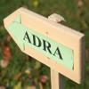 Bild zum Weblog ADRA-Sponsorenlauf