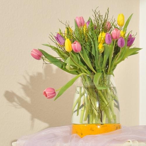 Bild zum Weblog Frühlingskonzert