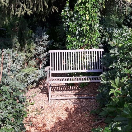 Bild zum Weblog 1. Christlicher Senioren-Stammtisch