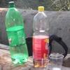 Bild zum Weblog SUN, FRESH AIR, EXERCISE, NATURE     -    Lainzer Tiergarten
